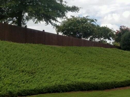 Stonehaven Fence Paint